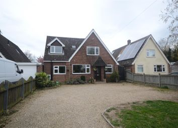 Thumbnail 5 bedroom detached bungalow for sale in Rackheath, Norwich