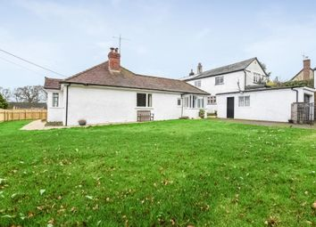Thumbnail 2 bed detached bungalow for sale in Shute Road, Kilmington, Axminster, Devon