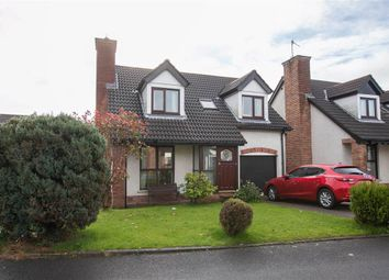 Thumbnail 4 bed detached house for sale in 60, Garnock Hill, Belfast