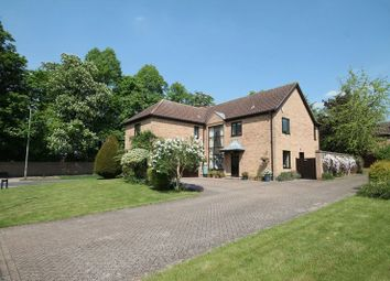 Thumbnail 5 bed detached house for sale in Swan Grove, Exning, Newmarket