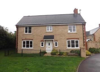 Thumbnail 4 bedroom detached house to rent in Fitzpiers Close, Swindon