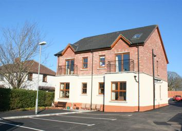 Thumbnail 3 bedroom flat to rent in 7, Laganville Court, Lisburn