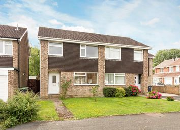 Thumbnail 3 bed semi-detached house for sale in Hornbeam Road, Havant, Hampshire