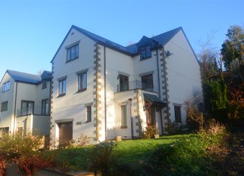 Thumbnail 4 bed detached house to rent in Old Station Road, Moorswater, Liskeard