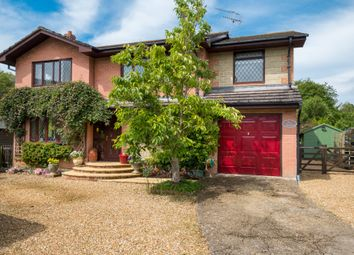 Thumbnail 4 bed detached house for sale in Moortown Lane, Brighstone, Newport