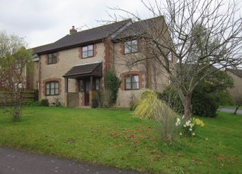 Thumbnail 4 bed detached house to rent in Globe Orchard, Haselbury Plucknett, Crewkerne
