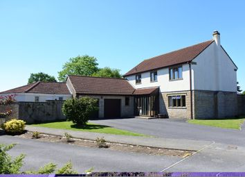 Thumbnail 4 bed detached house for sale in Freame Way, Gillingham