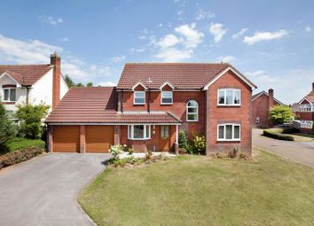 Thumbnail 4 bed detached house for sale in Juniper Close, Tiverton