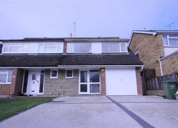 Thumbnail 4 bed semi-detached house to rent in Belmont Close, Wickford, Essex