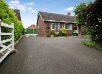Thumbnail 3 bedroom bungalow for sale in Field Lane, Hempnall, Norwich