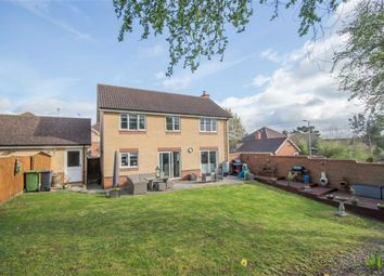 Thumbnail 4 bedroom detached house for sale in Ellis Close, Hoddesdon, Hertfordshire