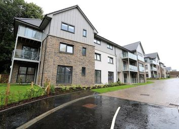 Thumbnail 2 bed flat to rent in Knights Grove, Newton Mearns, Glasgow