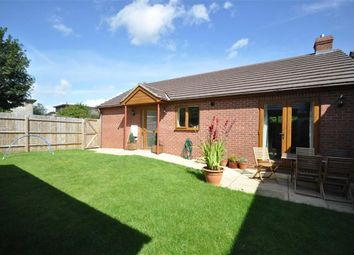 Thumbnail 2 bed detached bungalow to rent in Lower Howsell Road, Malvern