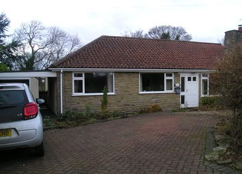 Thumbnail 3 bed detached bungalow to rent in Castlegate, Pickering