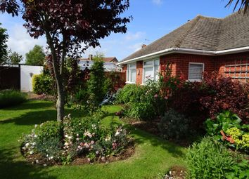 Thumbnail 3 bed semi-detached bungalow for sale in Selsey Close, Worthing
