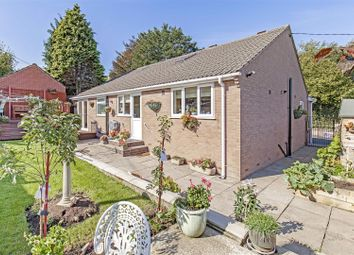 Thumbnail 5 bedroom detached bungalow for sale in Highstairs Lane, Stretton, Alfreton