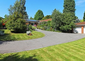 4 bed bungalow for sale in Lower Broad Oak Road, West Hill, Ottery St. Mary EX11