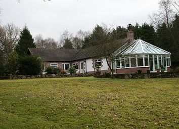 Thumbnail 4 bed bungalow for sale in Birchwood, Trigony, Thornhill