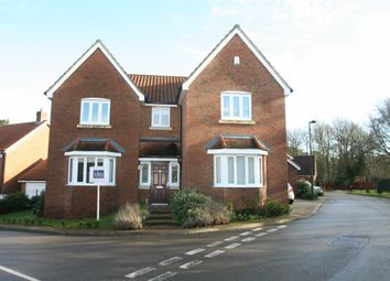 Thumbnail 4 bed detached house to rent in Gardenia Road, Bromley