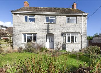 Thumbnail 3 bed detached house for sale in Shute Lane, Long Sutton, Langport, Somerset