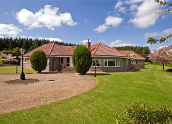 Thumbnail 5 bed bungalow for sale in Brae Lodge, Ordhead, Inverurie, Aberdeenshire