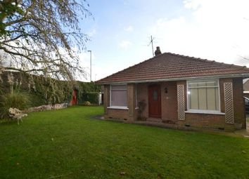 Thumbnail 3 bed bungalow to rent in Barton Road, Luton