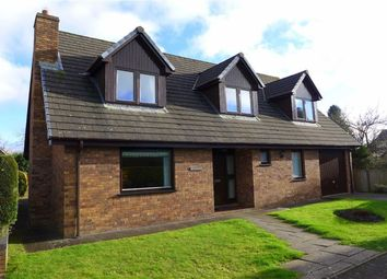 Thumbnail 4 bedroom detached house for sale in Heol Alun, Aberystwyth, Ceredigion