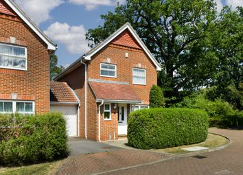 Thumbnail 3 bed detached house to rent in Trotter Way, Epsom