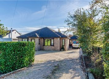 Thumbnail 5 bedroom detached bungalow for sale in St Neots Road, Hardwick, Cambridge