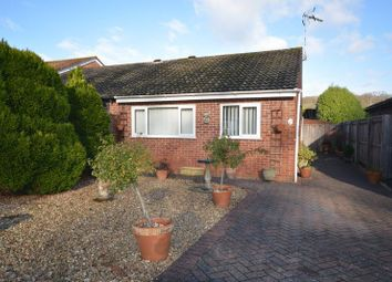 Thumbnail 2 bedroom bungalow to rent in Evergreen Close, Exmouth