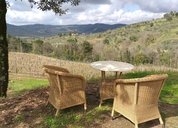 Thumbnail 3 bed farmhouse for sale in 21149 Portion Greve In Chianti, Greve In Chianti, Florence, Tuscany, Italy