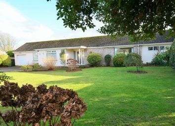 Thumbnail 3 bed bungalow for sale in Links Close, Churston Ferrers, Brixham.