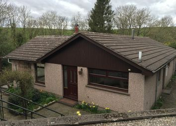 Thumbnail 3 bedroom bungalow to rent in Broomhill Road Tannadice, Forfar, Angus