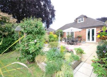 Thumbnail 3 bed semi-detached bungalow for sale in Bannard Road, Maidenhead, Berkshire