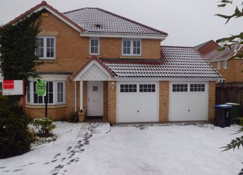 Thumbnail 4 bed detached house to rent in Chillerton Way, Wingate, Durham
