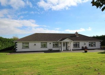 Thumbnail 5 bed bungalow for sale in County Tipperary, Ireland