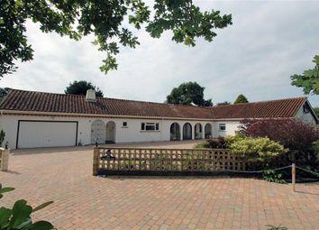 Thumbnail 5 bed bungalow for sale in Barton Common Lane, Barton On Sea, New Milton