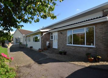 Thumbnail 5 bed bungalow to rent in Cross Lanes, Pill, Bristol