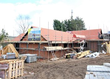 Thumbnail 3 bedroom detached bungalow for sale in New Ground Road, Aldbury, Tring