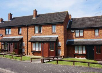 Thumbnail 3 bed property to rent in Sycamore Close, Taunton