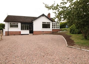 Thumbnail 3 bed bungalow for sale in Belfast Road, Dundonald, Belfast