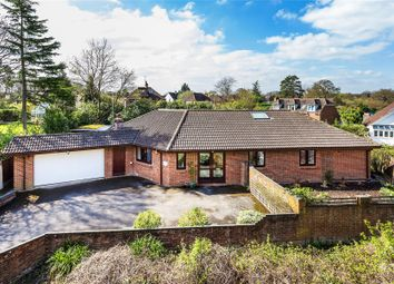 Thumbnail 4 bed bungalow for sale in Woking, Surrey