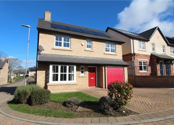 Thumbnail 4 bedroom detached house for sale in Seagent Place, Consett, Durham