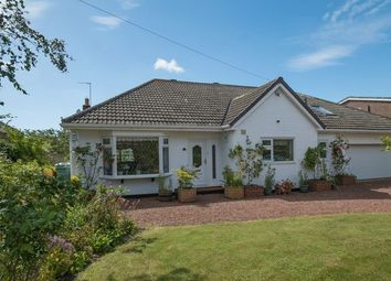 Thumbnail 5 bedroom detached bungalow for sale in Avondale Road, Darras Hall, Ponteland