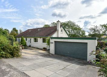Thumbnail 3 bed bungalow for sale in Blebo Craigs, Cupar