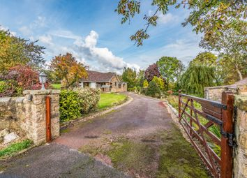 Thumbnail 4 bed detached house for sale in York Lane, Morthen, Rotherham