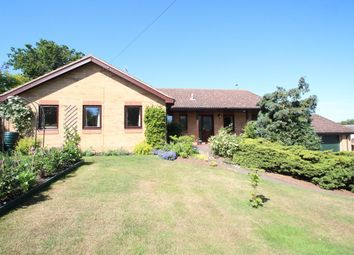 Thumbnail 4 bed detached bungalow for sale in School Road, Waldringfield, Woodbridge