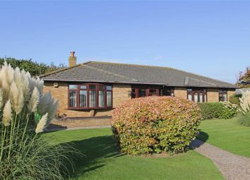 Thumbnail 4 bedroom bungalow for sale in Becton Mead, Barton On Sea, New Milton