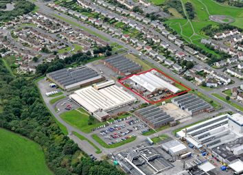 Thumbnail Industrial to let in Unit 6, Salterbeck Trading Estate, Workington