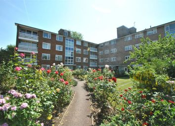Thumbnail 3 bed flat to rent in Elm Avenue, London